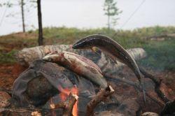 ...grillen wir am Stock über dem Feuer