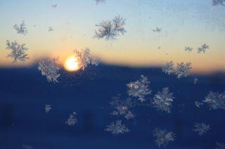 Eisblumen am Autofenster