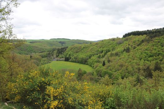 Blick aufs Hahnenbachtal von Hellkirch aus