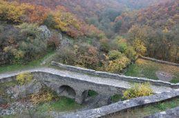 Blick in den Burggarten