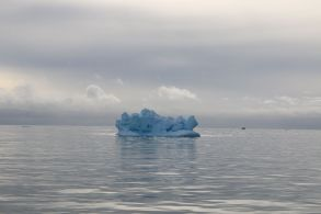 ...beleuchtet die Sonne die Eisberge