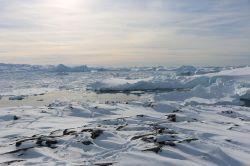 ...hoch über dem Eisfjord