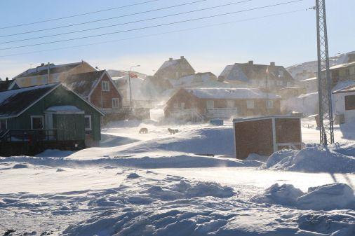 ein scharfer Wind wirbelt den Schnee auf