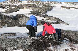 Eis zertrümmern an einer gefrorenen Pfütze