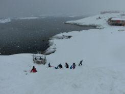 Rodelbahn im Schnee - auch ein paar Einheimische Kinder haben sich dazugesellt