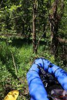 mit dem Boot durch den Wald