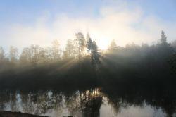 Morgenstimmung am Fluß