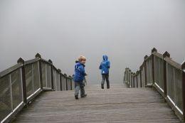 über die Brücke in den Nebel