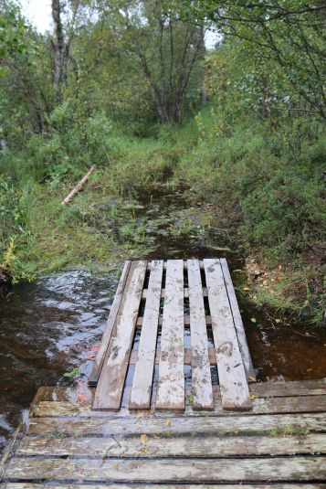 hoher Wasserstand: der Weg vom Steg an Land endet im Wasser