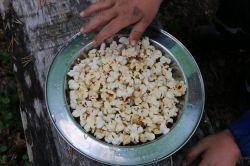Lagerfeuer-Popcorn