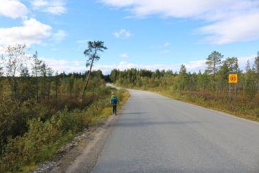 Straße nach Inari