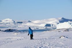 Niklas gleitet elegant hinab zum Eisfjord