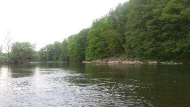 Flussimpressionen