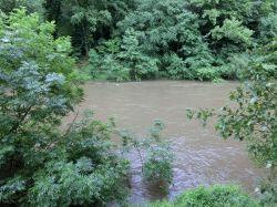 der Tarn am näcshten Morgen - das Wasser ist nicht mehr allzu weit von der Zeltwiese entfernt