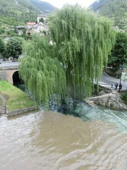 Imporessionen vom Hochwasser