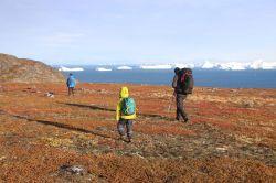 Rückweg nach Ilimanaq